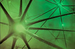 abstract, greenish rendering of a neuron