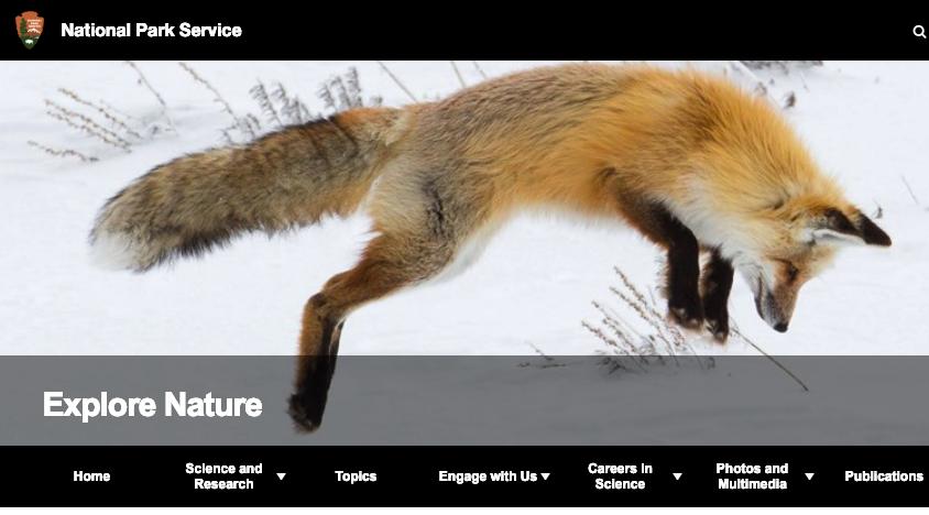 screenshot of explore nature website