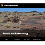 national parks fossils and paleontology page