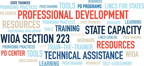 Professional Development, state capacity, technical assistance, training, W.I.O.A. Section 223, PD Center, LINCS for States, train-the-trainer, tools, resources, learning, webinars, promising practices, PD programs, W.I.O.A, LINCS Catalog, Self-Assessment, webcasts, peer sharing, and state trainers.