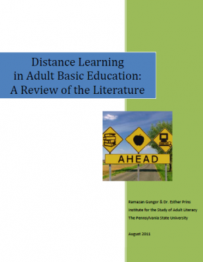 Decorative image for Resource Profile Distance Learning in Adult Basic Education: A Review of the Literature