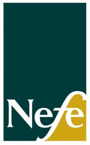 Decorative image for Resource Profile NEFE Financial Workshop Kits
