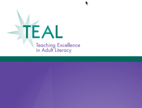 Decorative image for Resource Profile Teaching Excellence in Adult Literacy (TEAL)