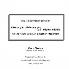 Decorative image for Resource Profile The Relationship Between Literacy Proficiency and The Digital Divide Among Adults with Low Education Attainment